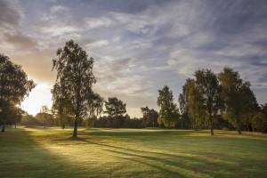 Ladybank Golf Club - 2016